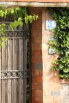 A gate and plants by 7whitefire7