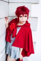 ::ZONE-00 Little Red Riding Hood:: by aoriko