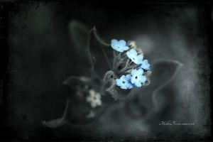 Little blue flowers alone in the dark by MichisArt