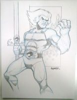 VA Comicon 2011: Lion-O by stratosmacca