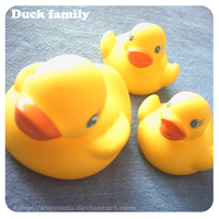 Duck family by Alquimia