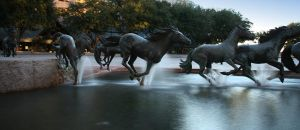The Death of Wild Mustangs by phrostie