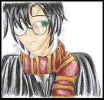 Harry Potter by fadingtwilight0
