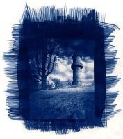 Cyanotype by drpablo