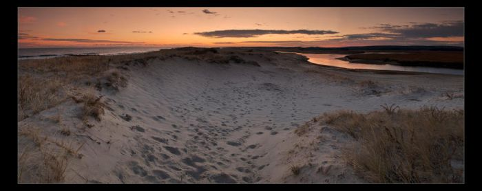 Town Neck Beach by AnonymousPhotography