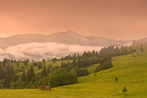 From Bukovina.. by lica20