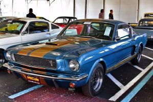 1966 Shelby GT350H by OpticaLLightspeed
