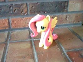 Fluttershy! by perry321
