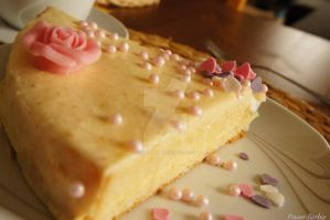 Orangen-Yoghurt-Torte 2 by Power-Barbie