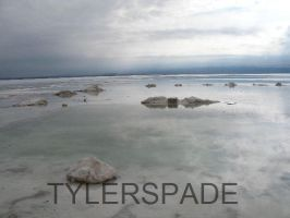 Salar by Tylerspade
