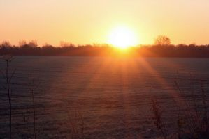 Frosty Morning sunrise by jacksonsrus