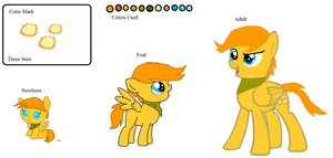 Sun Chaser's Ref Sheet by Umbreon-Fan-4