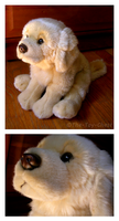 Webkinz Signature - Retriever by The-Toy-Chest