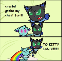 TO KITTY LAND by MienfooInTraining