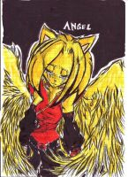 Tears Of An Angel by XxLady-MinaxX
