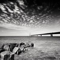The picture of bridge by anoxado