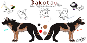Dakota ref 2013 by Psitt