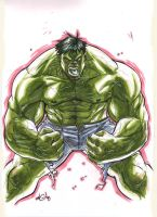 hulk MARKER MADNESS by deemonproductions