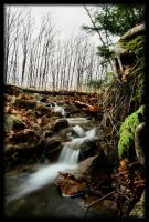 Fall runoff by NOS2002