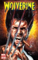 Wolverine Cover Variant Edition 1 by Twynsunz
