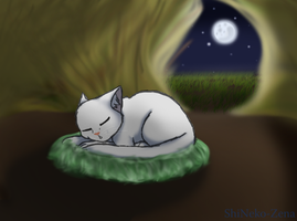 78. Sleep by geckoZen