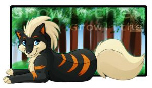 Black Shiny Growlithe by renahmoonsinger