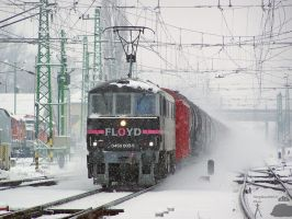 0450 002-5 with a freight in Gyor station by morpheus880223