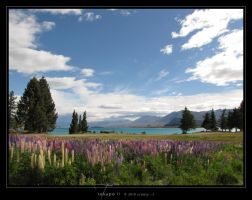 Tekapo II by Crooty