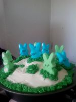 The cake I made all decorated! by SonicWillRule