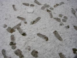 footprints in snow by quietsketches
