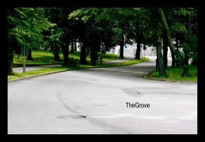 The grove by Sezzi1982