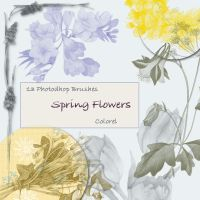 Spring Flowers Brushes by libidules