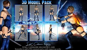 Ninja 3D Model Pack by SK-DIGIART