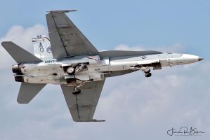 VFA-15 Hornet Demo by OpticaLLightspeed