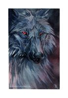 The night is dark and full of terrors by wolf-minori