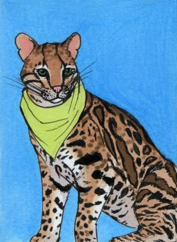 Ocelot ATC by bruisedhound