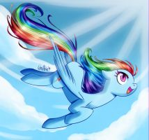 Rainbow Dash by WhitePhox