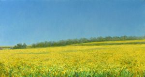 Yellow Panorama by AldemButcher