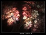Star Coral by psion005