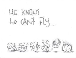 he knows he can't fly by onin07
