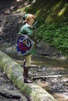 Link Cosplay by Ranefea