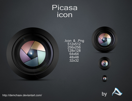 Picasa Icon by DemchaAV