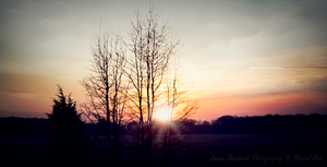 Sunrise in Southern Indiana April 2014 by LShepherd