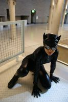Catwoman II by Hesthea
