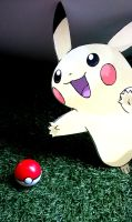 Pika Pika! Pokeball Found! Play Nintendo Tour 2014 by systemcat