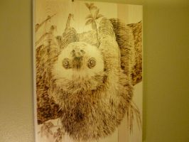 Sloth by MontanaJohnsons