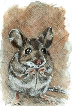 fieldmouse in watercolor by maptivm