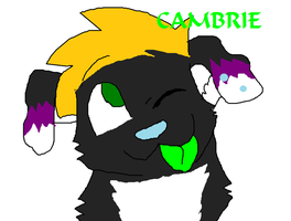 Cambrieee 8D by xLittleprettykittyx