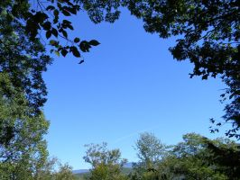 Azure Sky Encircled by Trees by SteelFanged