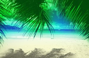 Beautiful Beach by D3L1GHT